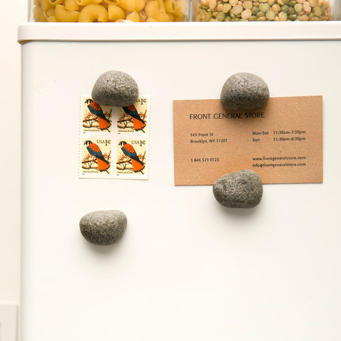 Pebble Magnets