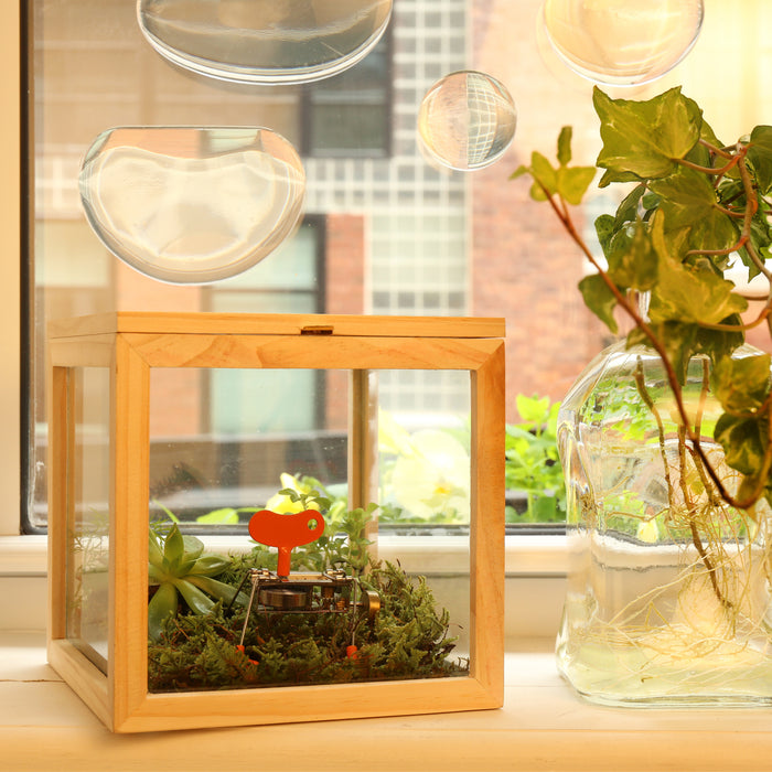 Glass Storage Box - Square