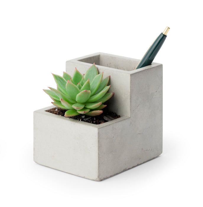 Concrete Small Planter And Pen Holder