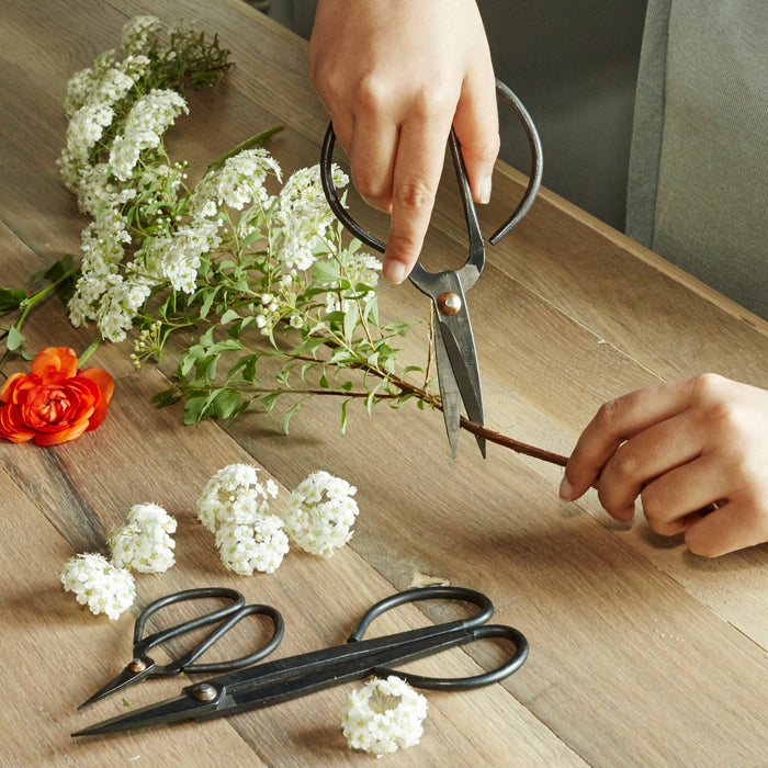 Scissor Set For Garden