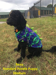 Green Dragon Scale Pet Shirt - Coquetry Clothing