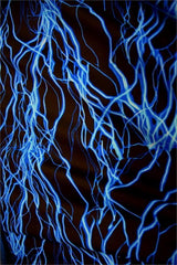 UV Blue Lightning Fabric - Coquetry Clothing