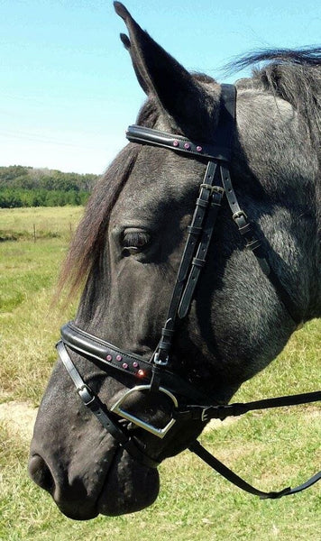 Draft Horse Black Leather English Bridle with Pink Crystals - Sterling Steed Enterprises