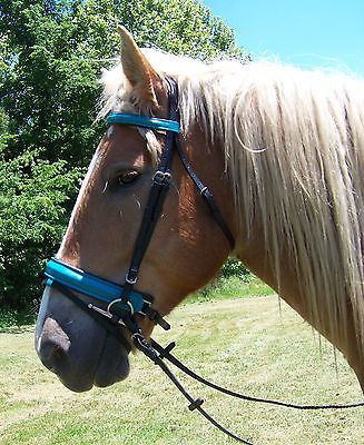 Draft Horse Black and Teal Leather English Bridle - Sterling Steed Enterprises - 1