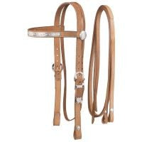 Draft/Large Horse Silver Show Headstall and Reins