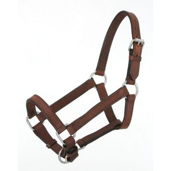 Miniature-Leather Halter made by Royal King - Sterling Steed Enterprises