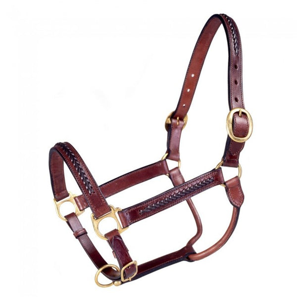 Royal King Braided Leather Horse Halter