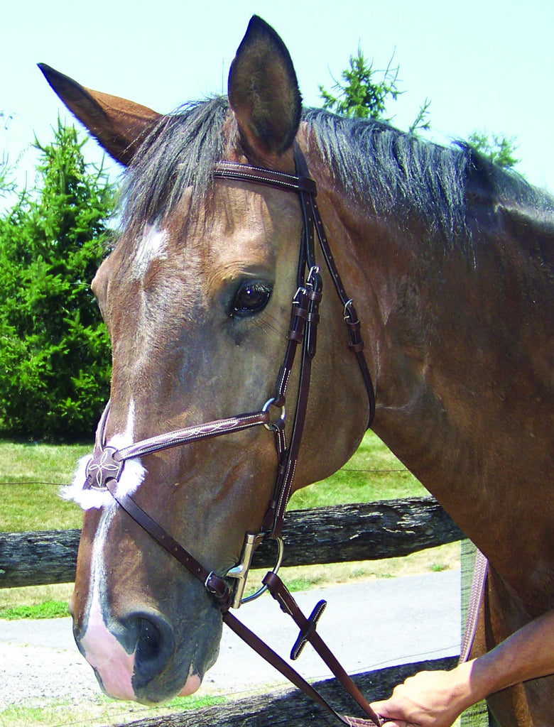 Figure 8 Bridle, Fancy Raised/Padded, ProAm, Cob, Full, WB - Sterling Steed Enterprises