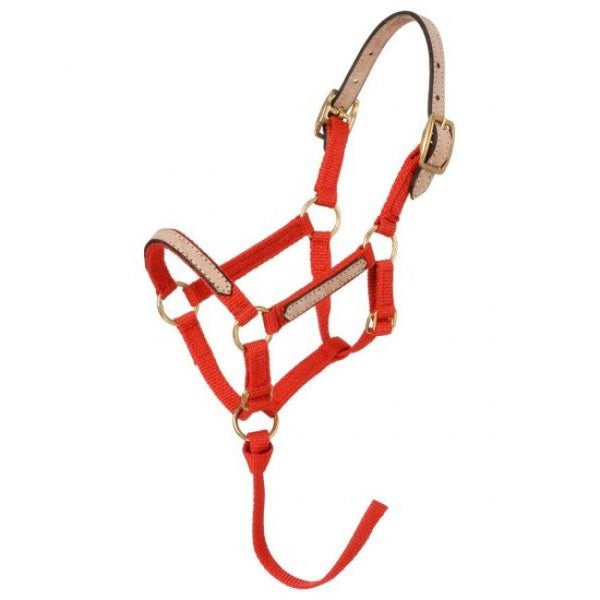 Miniature-Nylon Breakaway Halter - Sterling Steed Enterprises