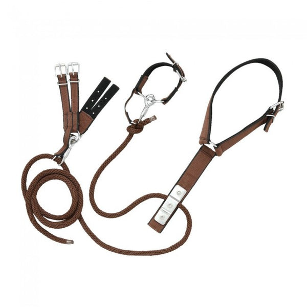 Hobbles-Tough-1 Nylon Miniature Breeding Hobble