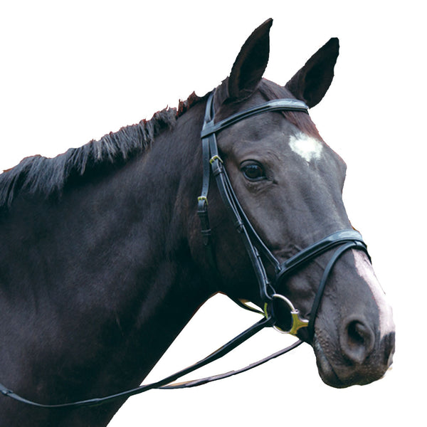 Exselle Elite Plain & Fancy Bridle-Black