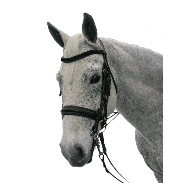 Exselle Elite Plain Raised Padded Rolled Leather Double Bridle and Xtra Browband-Black