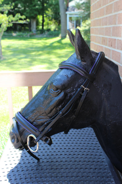 Draft Horse Black Leather Purple Padded Bridle