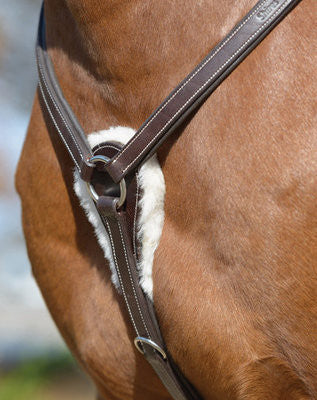Shires Five Point Breastplate - Sterling Steed Enterprises