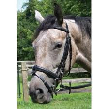 Padded Bridle with Removable Flash by Shannon - Sterling Steed Enterprises
