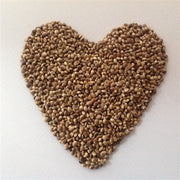 Toasted Hemp Seeds Organic NO SALT-BULK 2.5 LB-Hemp Food Products-cousinmaryjane-Lady Jane Gourmet Seed Company