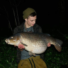 Big Bellied Common