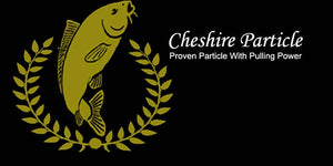 Cheshire Particle