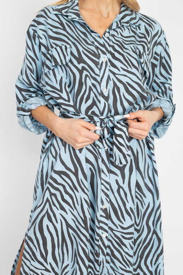 Serena, A-Line Zebra Printed Maxi Long Dress