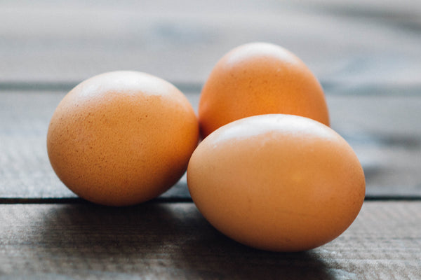 eggs for protein while vegetarian during pregnancy