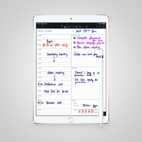 Daily Diary template for paperless use on iPad or tablet