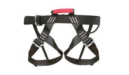 Galaxy Rental Harness (One-Size-Fits-Most)