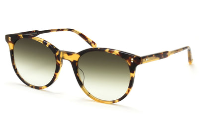 Dark Tortoise with Semi-Flat Olive Gradient Lenses