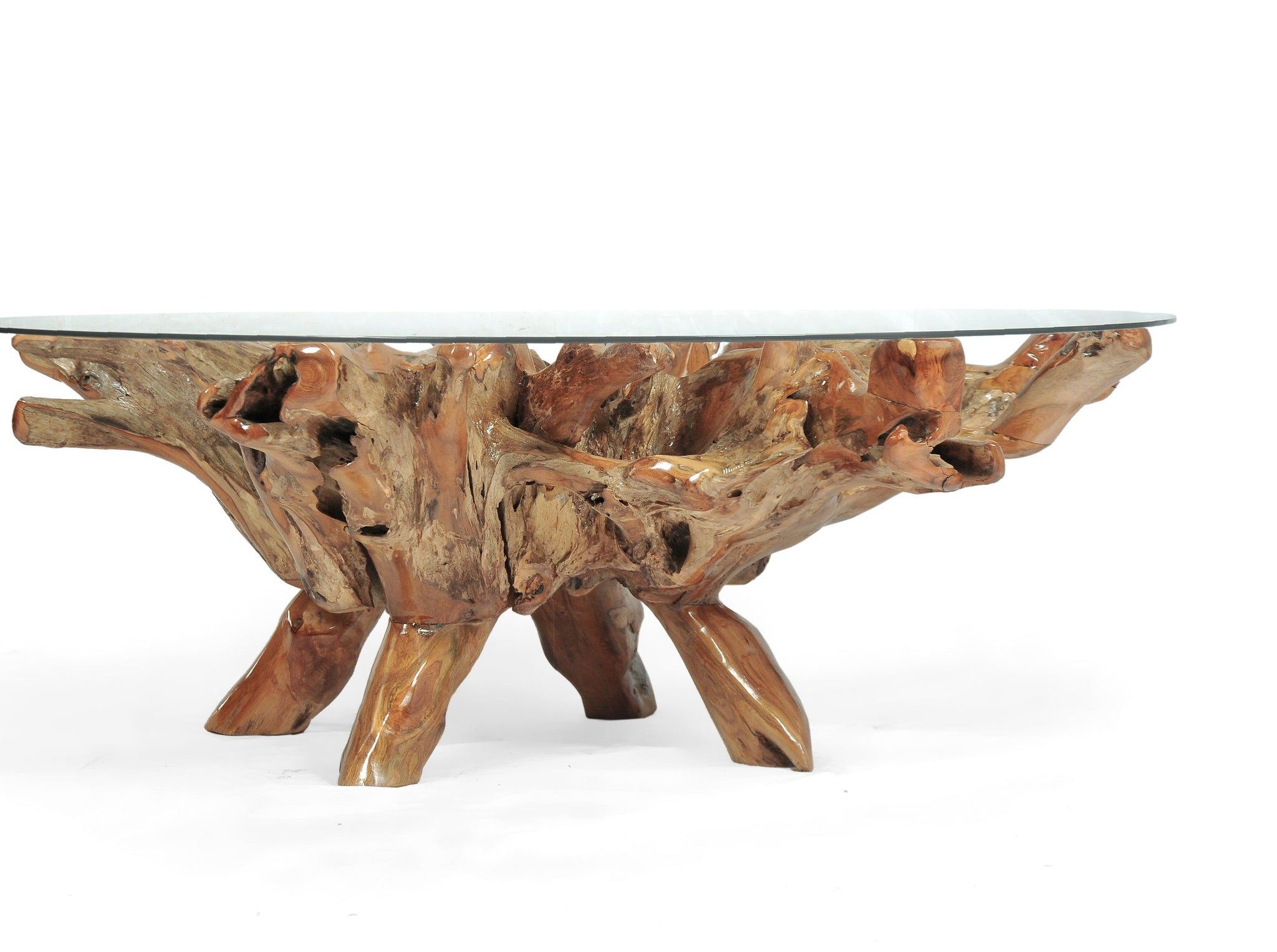 "Teak Wood Root Coffee Table including a 63"" Round Glass ..."