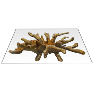 "Teak Wood Root Rectangular Coffee Table with 55"" x 43"" Glass Top"