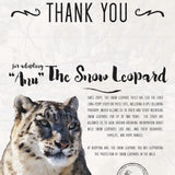 Wild Snow Leopard Adoption