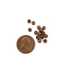 Copper Tone Spacer Beads