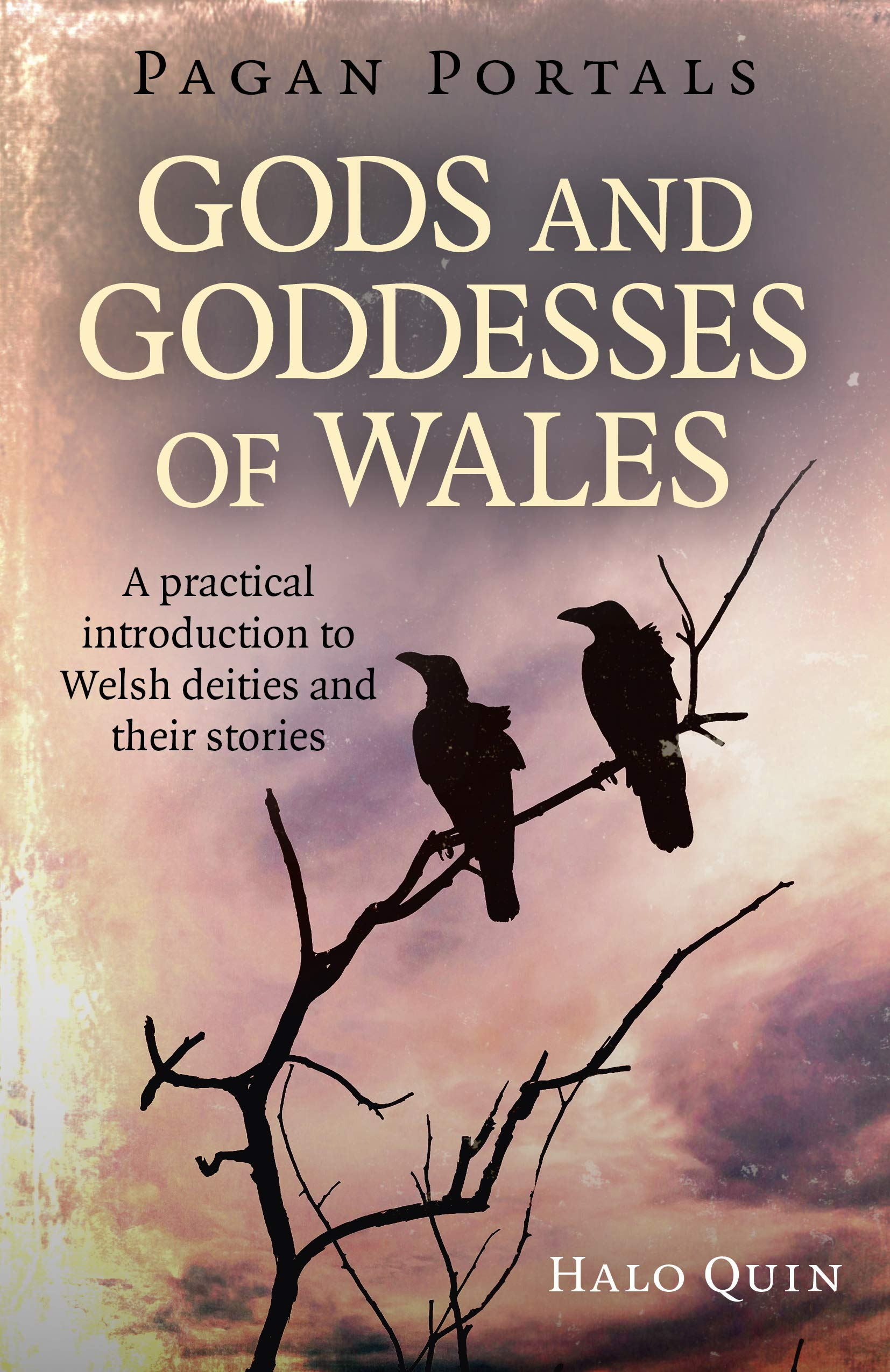 Pagan Portals - Gods & Goddess of Wales