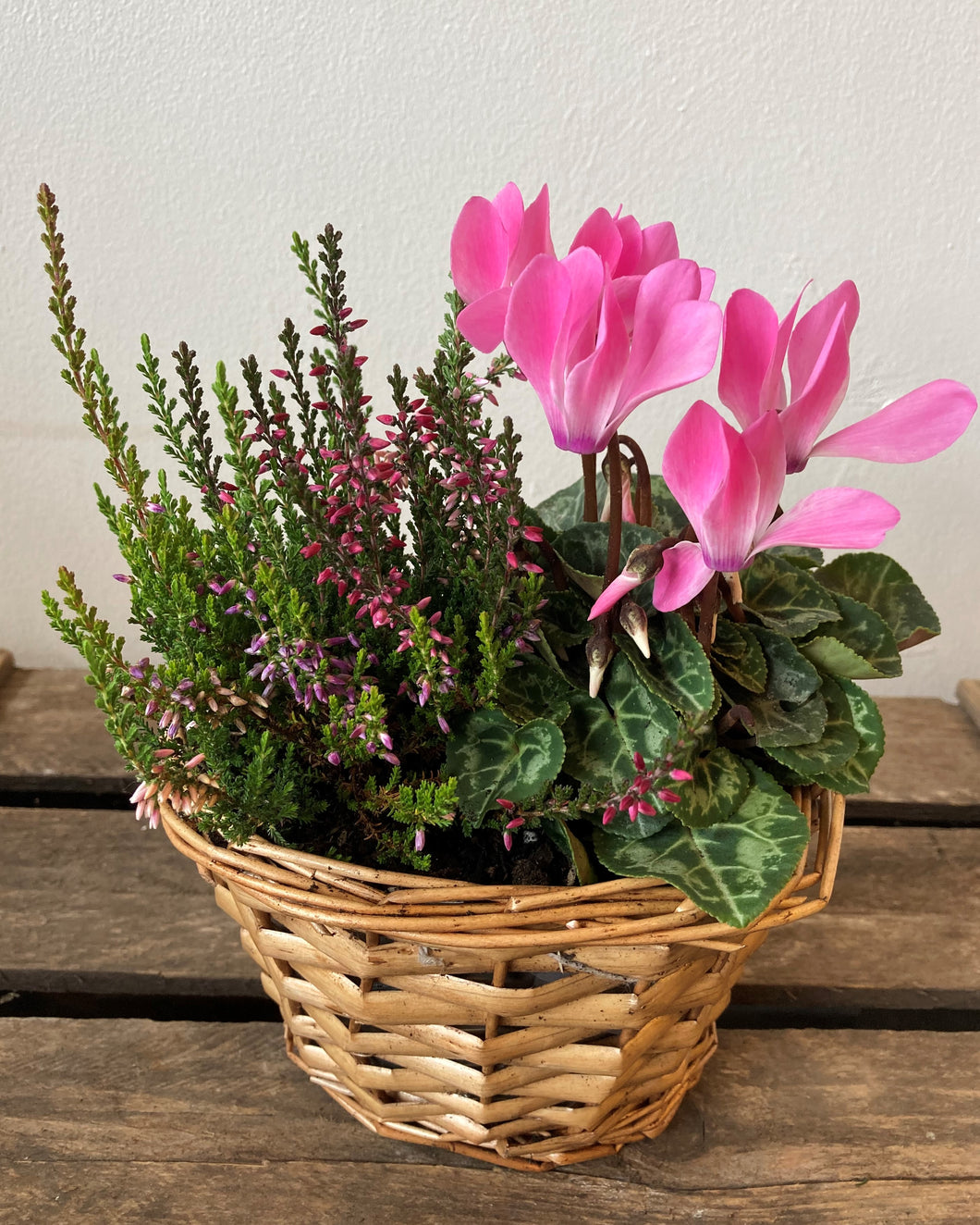 Pink Planted basket