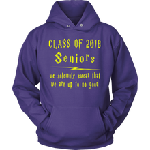 Load image into Gallery viewer, Seniors We Swear - Class of 2018 hoodie