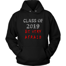 Load image into Gallery viewer, class of 2019 hoodies