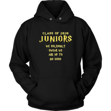 Load image into Gallery viewer, We Solemnly Swear - Class of 2020 Sweatshirts - Black
