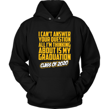 Load image into Gallery viewer, Senior 20 Hoodie