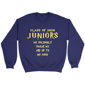 We Solemnly Swear - Class of 2020 Sweatshirts