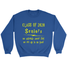 Load image into Gallery viewer, We Solemnly Swear - Class Of 2020 Hoodie