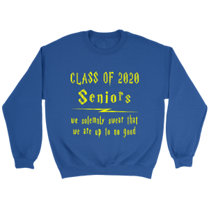 We Solemnly Swear - Class Of 2020 Hoodie