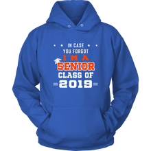 Load image into Gallery viewer, I'm A Senior - Senior 19 Hoodie - Blue
