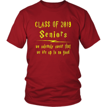 Load image into Gallery viewer, We Solemnly Swear - Class of 2019 T shirts - Red