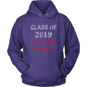Class of 2019 hoodies with slogans purple