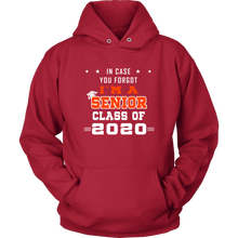 Load image into Gallery viewer, In Case You Forgot - Senior Class Of 2020 Hoodies
