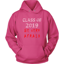 Load image into Gallery viewer, Class of 2019 hoodies with slogans pink