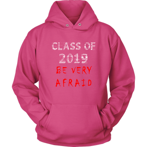 Class of 2019 hoodies with slogans pink