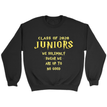 Load image into Gallery viewer, We Solemnly Swear - Class of 2020 Sweatshirts