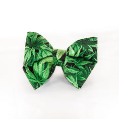 Marijuana Leaf Dog Collar