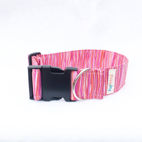 Island Sunset Designer Dog Collar - Clearance - 50% OFF!