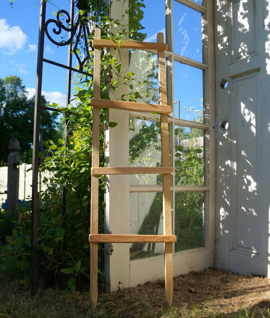 Decorative Ladder, Garden Trellis Pot Trellis Garden Ladder Planter ...